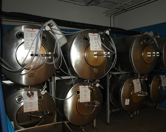 This photo shows large, silver-colored, cylindrical fermentation tanks.