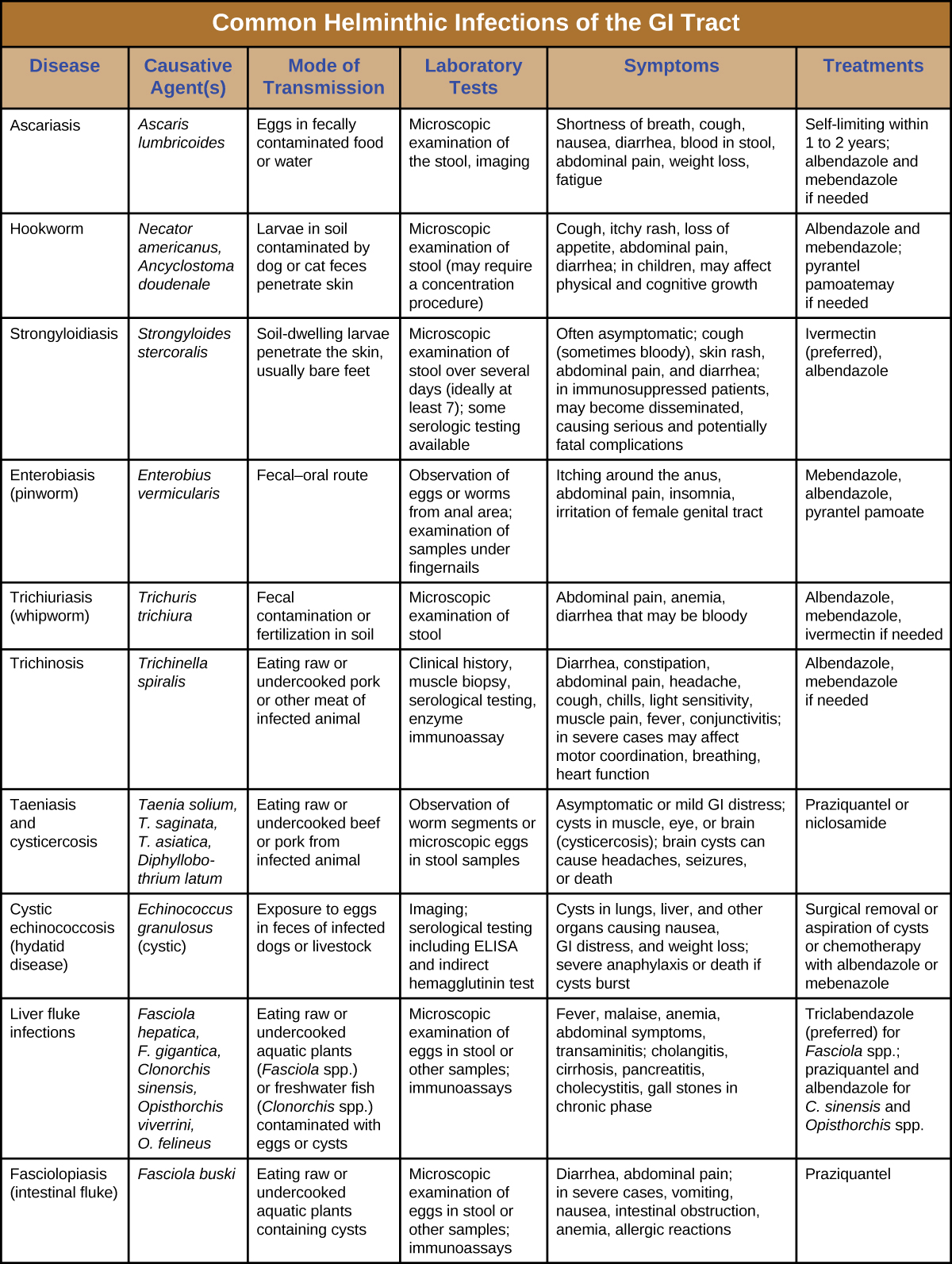 Table titled: Helminthic Infections of the GI Tract. Columns: Disease, Pathogen, Signs and Symptoms, Transmission, Diagnostic Tests, Antimicrobial Drugs. Ascariasis; Ascaris lumbricoides; Shortness of breath, cough, nausea, diarrhea, bloody stool, abdominal pain, weight loss, fatigue, worms in stool or sputum; Ingestion of eggs in fecally contaminated food and water; Microscopic observation of eggs in stool sample, X-rays, ultrasounds or MRIs; Albendazole, mebendazole. Hookworm; Necator americanus, Ancyclostoma doudenale; Cough, itchy rash, wheezing, loss of appetite, abdominal pain, diarrhea, cutaneous larva migrans; Larvae in soil contaminated by dog or cat feces penetrate the skin; Microscopic observation of eggs in stool sample; Albendazole, mebendazole, pyrantel pamoate, thiabendazole. Hydatid disease (cystic echinococcosis); Echinococcus granulosus ; Cysts in lungs, liver, and other organs causing nausea, GI distress, and weight loss; severe anaphylaxis or death if cysts burst; Exposure to eggs in feces of infected dogs or livestock; CT, MRI, or ultrasonography to detect cysts; ELISA, indirect hemagglutinin test; Albendazole or mebenazole. Intestinal flukes (fasciolopsiasis); Fasciolopsis buski; Diarrhea, abdominal pain; in severe cases, vomiting, nausea, intestinal obstruction, anemia, allergic reactions; Ingestion of raw or undercooked aquatic plants containing cysts; Microscopic examination of eggs in stool or other samples; immunoassays; Praziquantel. Liver flukes; Fasciola hepatica, F. gigantica, Clonorchis sinensis, Opisthorchis viverrini, O. felineus; Fever, malaise, anemia, abdominal signs and symptoms, transaminitis; cholangitis, cirrhosis, pancreatitis, cholecystitis, gall stones in chronic phase; Ingestion of raw or undercooked aquatic plants (Fasciola spp.) or freshwater fish (Clonorchis spp.) contaminated with eggs or cysts; Microscopic observation of eggs in stool or other samples; immunoassays; Triclabendazole for Fasciola; praziquantel, albendazole for Clonorchis and Opisthorchis. Pinworms (Enterobiasis); Enterobius vermicularis; Itching around the anus, abdominal pain, insomnia, irritation of female genital tract Fecal-oral route; Visual observation of worms in anal region; microscopic observation of eggs from anal area or under fingernails; Mebendazole, albendazole, pyrantel pamoate. Strongyloidiasis; Strongyloides stercoralis; Often asymptomatic; cough (sometimes bloody), skin rash, abdominal pain, diarrhea; in immunosuppressed patients, may become disseminated, causing serious and potentially fatal complications Soil-dwelling larvae penetrate the skin, usually bare feet; Microscopic observation of larvae in stool; serological testing for antigens; Ivermectin, albendazole. Tapeworms (taeniasis) ; Taenia solium, T. saginata, T. asiatica, Diphyllobothrium latum; Asymptomatic or mild GI distress; cysts in muscle, eye, or brain (cysticercosis); brain cysts can cause headaches, seizures, or death; Ingestion of raw or undercooked pork or beef from infected animal; Observation of worm segments or microscopic eggs in stool; CT or MRI to detect cysts; Praziquantel, niclosamide. Trichinosis; Trichinella spiralis, other Trichinella spp. Diarrhea, constipation, abdominal pain, headache, cough, chills, light sensitivity, muscle pain, fever, conjunctivitis; in severe cases may affect motor coordination, breathing, heart function; Ingestion of raw or undercooked pork or other meat of infected animal; Observation of cysts in muscle biopsy, enzyme immunoassay; Albendazole, mebendazole. Whipworm (trichuriasis); Trichuris trichiura; Abdominal pain, anemia, diarrhea (possibly bloody), rectal prolapse; Ingestion of eggs in fecally contaminated food Microscopic observation of eggs in stool; Albendazole, mebendazole, ivermectin.