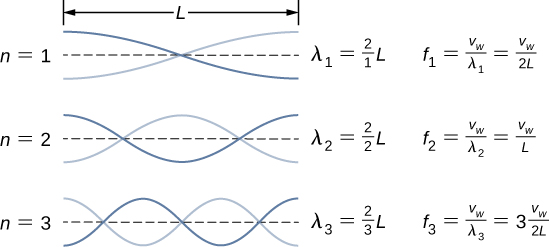 Three figures of a string of length L are shown. Each has two waves. The first one has 1 node. It is labeled lambda 1 = 2 by 1 times L, f1 = vw by lambda 1 = vw by 2L. The second figure has 2 nodes. It is labeled lambda 2 = 2 by 2 times L, f2 = vw by lambda 2 = vw by L. The third figure has three nodes. It is labeled lambda 3 = 2 by 3 times L, f3 = vw by lambda 3 equal to 3 times vw by 2L.