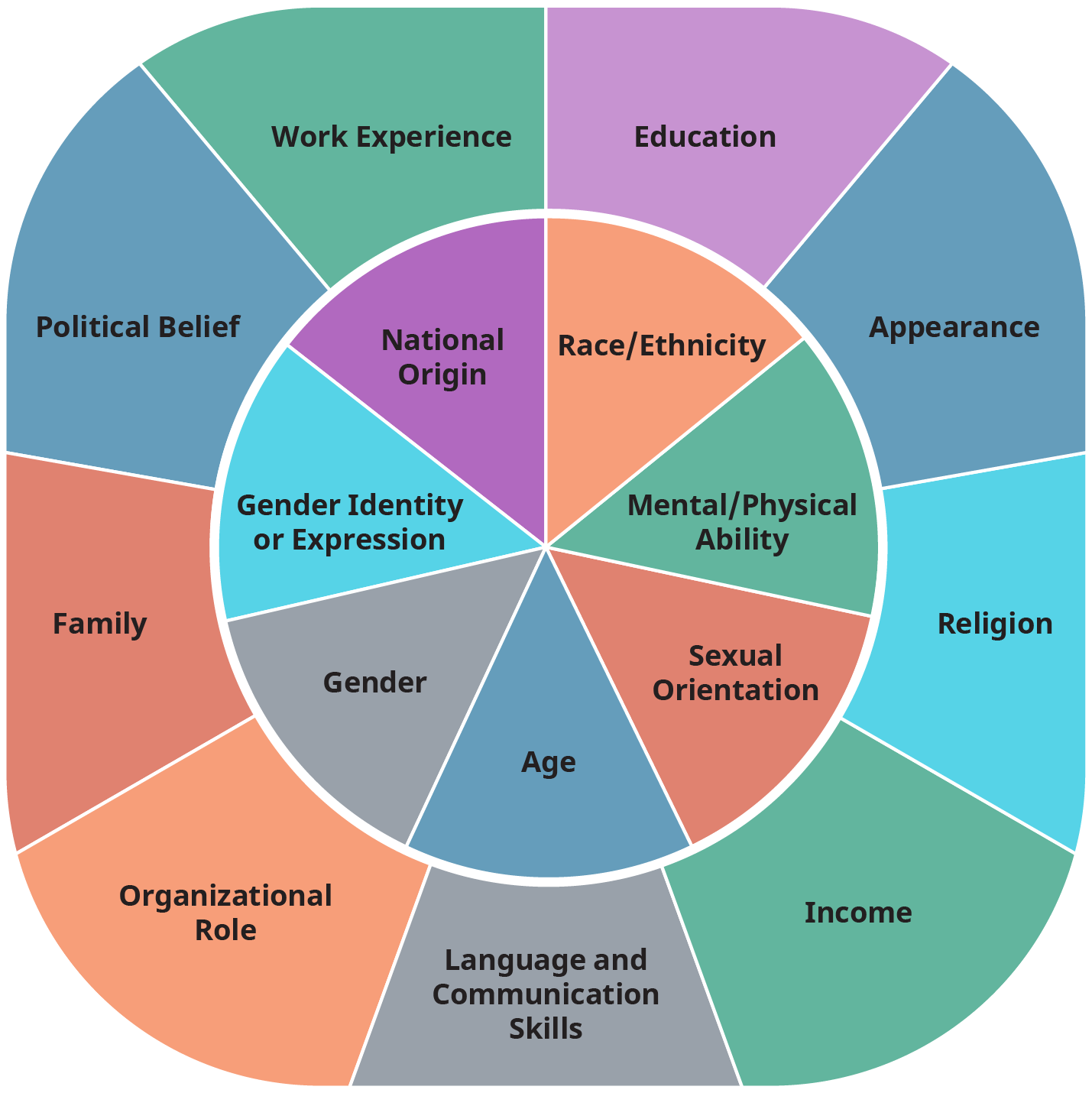 A diagram illustrates the intersectionality wheel divided into two circles one inside the other.