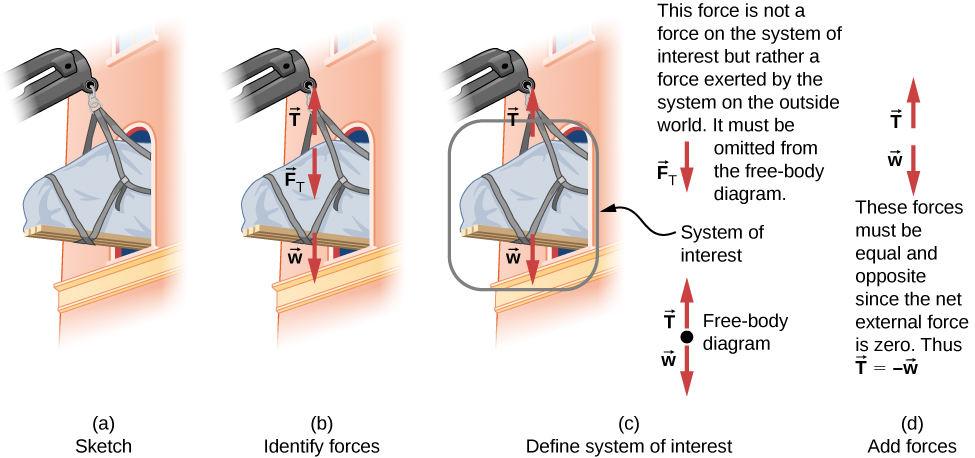This figure shows the development of the free body diagram of a piano being lifted and passed through a window. Figure a is a sketch showing the piano hanging from a crane and part way through a window. Figure b identifies the forces. It shows the same sketch with the addition of the forces, represented as labeled vector arrows. Vector T points up, vector F sub T points down, vector w points down. Figure c defines the system of interest. The sketch is  shown again with the piano circled and identified as the system of interest. Only vectors T up and w down are included in this diagram. The downward force F sub T is not a force on the system of interest since it is exerted on the outside world. It must be omitted from the free body diagram. The free body diagram is shown as well. It consists of a dot, representing the system of interest, and the vectors T pointing up and w pointing down, with their tails at the dot. Figure d shows the addition of the forces. Vectors T and w are shown. We are told that these forces must be equal and opposite since the net external force is zero. Thus T is equal to minus w.