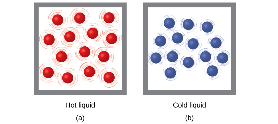 "Two molecular drawings are shown and labeled a and b. Drawing a is a box containing fourteen red spheres that are surrounded by lines indicating that the particles are moving rapidly. This drawing has a label that reads ""Hot liquid."" Drawing b depicts another box of equal size that also contains fourteen spheres, but these are blue. They are all surrounded by smaller lines that depict some particle motion, but not as much as in drawing a. This drawing has a label that reads ""Cold liquid."""