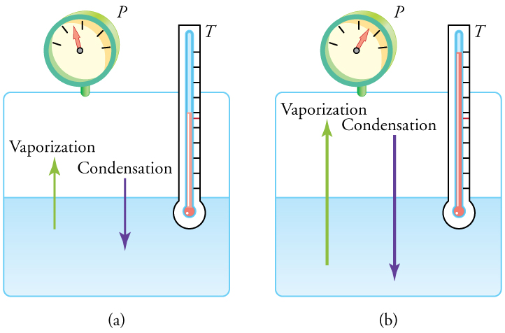 Figure a shows a closed system containing a liquid and a gas. A thermometer with one end in the liquid indicates an unspecified temperature, and a pressure gauge indicates an unspecified pressure. A vector from the liquid to the gas represents the rate of vaporization, and a vector from the gas into the liquid represents the rate of condensation. The two vectors are equal in length, illustrating that the two rates are equal. Figure b is essentially the same as figure a, except that the pressure, temperature, and rates of condensation and vaporization are all greater than in figure a. The rates of vaporization and condensation in figure b are equal to each other, even though they are greater than the rates in figure a.