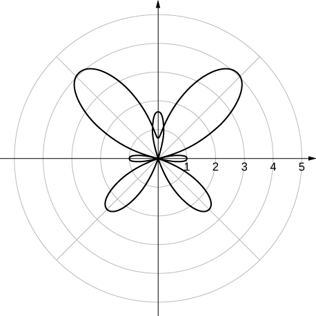 A geometric shape that resembles a butterfly with larger wings in the first and second quadrants, smaller wings in the third and fourth quadrants, a body along the θ = π/2 line and legs along the θ = 0 and π lines.