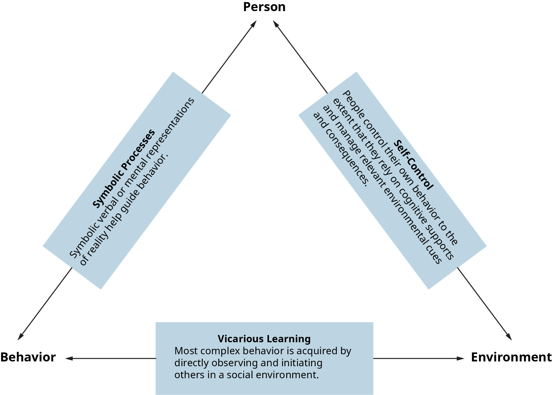 A diagram shows the basic model of social learning.