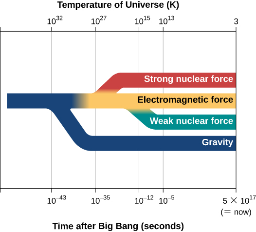 "A graph showing the four forces that govern the universe. ""Temperature of the Universe (K)"" is labeled at the top, and ""Time after Big Bang (seconds)"" is labeled at the bottom. Corresponding labels from left to right are ""10 to the 32 K"" and ""10 to the negative 43 seconds"", ""10 to the 37 K"" and ""10 to the negative 35 seconds"", ""10 to the 15 K"" and ""10 to the negative 12 seconds"", ""10 to the 13 K"" and ""10 to the negative 5 seconds"", and ""3"" and ""5 times 10 to the 17 seconds ( = now)"". On the graph is tree structure that starts at 10 to the 32 K, with a branch labeled ""Gravity"" breaking off first and at the bottom, then a branch labeled ""Strong nuclear force"" breaking off next toward the top, then another branch labeled ""weak nuclear force"" breaking off next toward the bottom but above ""Gravity"", with the original branch labeled ""Electromagnetic force"" extending above ""weak nuclear force""."