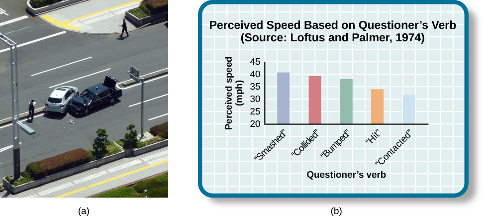 "Photograph A shows two cars that have crashed into each other. Part B is a bar graph titled ""perceived speed based on questioner's verb (source: Loftus and Palmer, 1974)."" The x-axis is labeled ""questioner's verb, and the y-axis is labeled ""perceived speed (mph)."" Five bars share data: ""smashed"" was perceived at about 41 mph, ""collided"" at about 39 mph, ""bumped"" at about 37 mph, ""hit"" at about 34 mph, and ""contacted"" at about 32 mph."