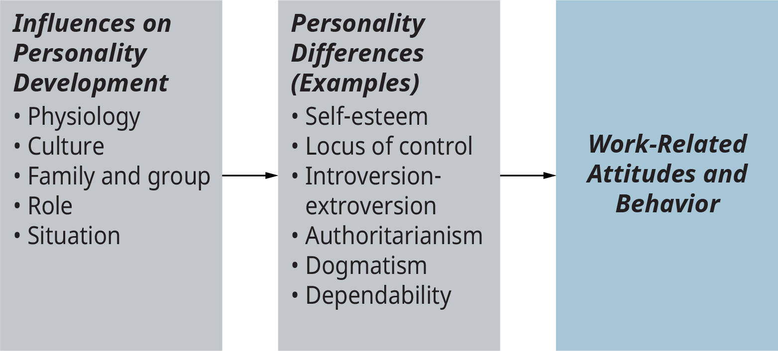 A diagram lists the influences on personality development and the personality differences that lead to work-related attitudes and behavior.