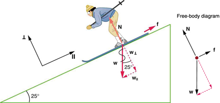 A skier is skiing down the slope and the slope makes a twenty-five degree angle with the horizontal. Her weight W, shown by a vector vertically downward, breaks into two components—one is W parallel, which is shown by a vector arrow parallel to the slope, and the other is W perpendicular, shown by a vector arrow perpendicular to the slope in the downward direction. Vector N is represented by an arrow pointing upward and perpendicular to the slope, having the same length as W perpendicular. Friction vector f is represented by an arrow along the slope in the uphill direction. IIn a free-body diagram, the vector arrow W for weight is acting downward, the vector arrow for f is shown along the direction of the slope, and the vector arrow for N is shown perpendicular to the slope.