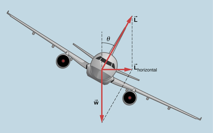 An illustration of an airplane coming toward us and banked (that is, tilted) by an angle theta in the clockwise direction, again as viewed by us. The weight w is shown as an arrow pointing straight down. A force L is shown pointing perpendicular to the wings, at an angle theta to the right of vertically up. The horizontal component of the force L is shown pointing to the right and is labeled as vector L sub horizontal. Dashed lines complete the parallelogram defined by vectors L and w, and show that the vertical component of L is the same size as w.