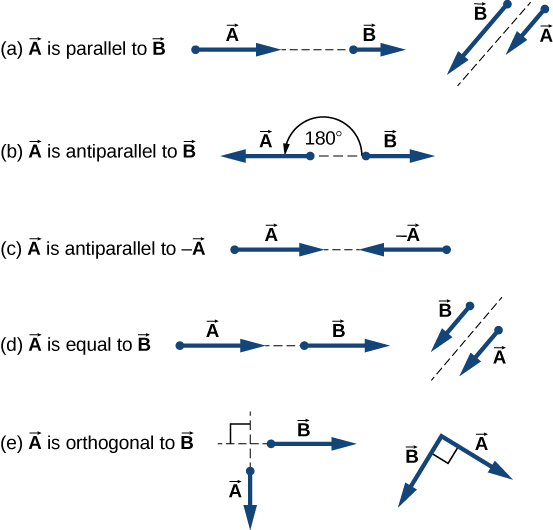 Figure a: Two examples of vector A parallel to vector B. In one, A and B are on the same line, one after the other, but A is longer than B. In the other, A and B are parallel to each other with their tails aligned, but A is shorter than B. Figure b: An example of vector A antiparallel to vector B. Vector A points to the left and is longer than vector B, which points to the right. The angle between them is 180 degrees. Figure c: An example of vector A antiparallel to minus vector A: A points to the right and –A points to the left. Both are the same length. Figure d: Two examples of vector A equal to vector B: In one, A and B are on the same line, one after the other, and both are the same length. In the other, A and B are parallel to each other with their tails aligned, and both are the same length. Figure e: Two examples of vector A orthogonal to vector B: In one, A points down and B points to the right, meeting at a right angle, and both are the same length. In the other, points down and to the right and B points down and to the left, meeting A at a right angle. Both are the same length.