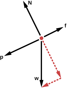 The diagram consists of a red dot with four solid black arrows pointing away from the dot. Arrow f is pointing to the right and slightly up. Arrow p is about half the size of arrow f and is pointing in the opposite direction, to the left and slightly down. An arrow N, about the same size as f, is pointing up and slightly to the left. Another similar sized arrow w is pointing straight down. A dotted red arrow extends from the red dot in the opposite direction of arrow N (down and to the right) and is the same size. Another short dotted red arrow extends from the tip of the first dotted red arrow to the tip of the w arrow and forms a right angle.