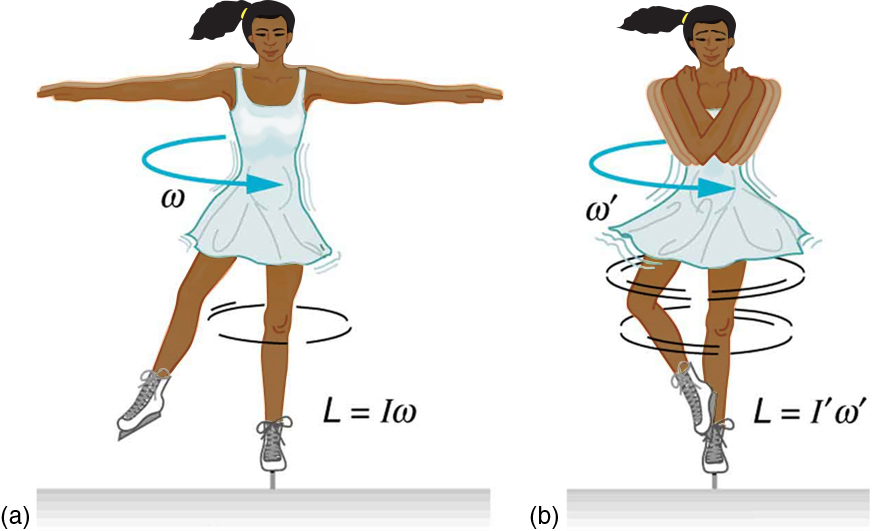 The image a shows an ice skater spinning on the tip of her skate with both her arms and one leg extended. The image b shows the ice skater spinning on the tip of one skate, with her arms crossed and one leg supported on another.