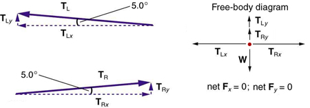 A vector T sub L making an angle of five degrees with the negative x axis is shown. It has two components, one in the vertical direction, T sub L y, and another horizontal, T sub L x. Another vector is shown making an angle of five degrees with the positive x axis, having two components, one along the y direction, T sub R y, and the other along the x direction, T sub R x. In the free-body diagram, vertical component T sub L y is shown by a vector arrow in the upward direction, T sub R y is shown by a vector arrow in the upward direction, and weight W is shown by a vector arrow in the downward direction. The net force F sub y is equal to zero. In the horizontal direction, T sub R x is shown by a vector arrow pointing toward the right and T sub L x is shown by a vector arrow pointing toward the left, both having the same length so that the net force in the horizontal direction, F sub x, is equal to zero.