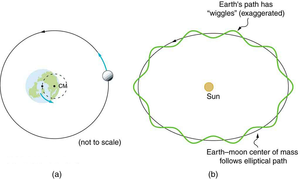 Figure a shows the Earth and the Moon around it orbiting in a circular path shown here as a circle around the Earth with an arrow over it showing the counterclockwise direction of the Moon. The center of mass of the circle is shown here with a point on the Earth that is not the Earth's center but just right to its center. Figure b shows the Sun and the counterclockwise rotation of the Earth around it, in an elliptical path, which has wiggles. Along this path the center of mass of the Earth-Moon is also shown; it follows non-wiggled elliptical path.