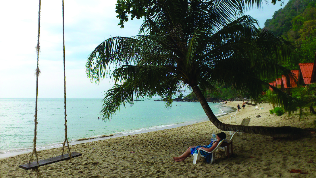 A photograph of a beach showing a person relaxing under a coconut tree next to a swing.