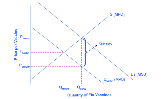The graph shows the market for flu shots: flu shots will go under produced because the market does not recognize their positive externality. If the government provides a subsidy to consumers of flu shots, equal to the marginal social benefit minus the marginal private benefit, the level of vaccinations can increase to the socially optimal quantity of QSocial.