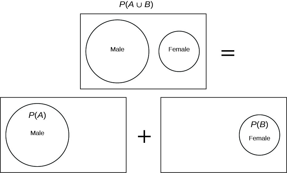 Venn diagrams model the formula for P(A and B) in the special case where A and B do not overlap. P(A union B) is represented by two separate (non-overlapping) circles inside a rectangle. The left circle is labeled Male. The right circle is labeled Female. To the right of this diagram is an equal sign. A sum of diagrams is on the line below. The left diagram shows only the Male circle inside the rectangle and is labeled P(A). Between the diagrams is a plus sign. The right diagram shows only the Female circle inside the rectangle and is labeled P(B).