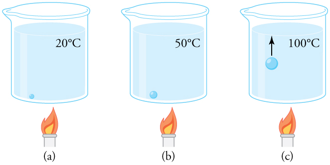 A beaker of water being heated over a flame. The beaker is shown at three different times. In the first, at twenty degrees C, a small bubble sits on the bottom of the beaker. In the second step, the water temperature is fifty degrees C and the bubble is larger, though still sitting on the bottom of the beaker. In the third step, the water temperature is one hundred degrees C. The bubble is larger and is rising toward the surface.