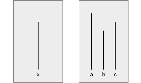 "A drawing has two boxes: in the first is a line labeled ""x"" and in the second are three lines of different lengths from each other, labeled ""a,"" ""b,"" and ""c."""
