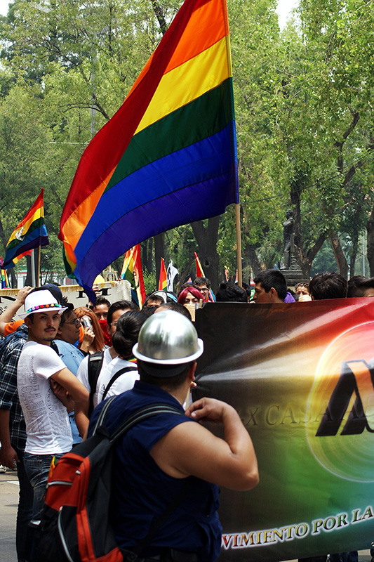 A photo shows a crowd of people holding rainbow flags participating in the Annual Pride Parade.