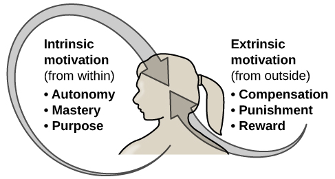 "An illustration shows a person's upper torso. An arrow on the left begins at the person's chest and curves around to point inside the head; inside the curve of the arrow are the words ""intrinsic motivation (from within)"" and three bullet points: ""autonomy,"" ""mastery,"" ""purpose."" An arrow on the right begins in empty space and curves to a point inside the head. Above the arrow are the words ""extrinsic motivation (from outside)"" and three bullet points: ""compensation,"" ""punishment,"" and ""reward."""