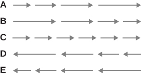 The gray arrows are organized in 5 horizontal rows and labeled on the left edge as A, B, C, D, E. The left edge of the arrows on each row line up in a vertical line as well as the right edge of each row of arrows (the sum of all are the same length). The arrows in each of the rows are as follows: Row A's four arrows are pointing right: shortest, slightly longer, longer yet, longest. Row B's four arrows are pointing right: longest, slightly shorter, shorter yet, shortest (same direction but reverse order of sizes of A's row. Row C's arrows are pointing right: There are six arrows all the same as the shortest size of the arrows in row A and B (but the total length of all arrows and spaces is the same in all rows). Row D's four arrows are pointing left: longest, slightly shorter, shorter yet, shortest (same size but opposite direction of B's row). Row E's four arrows are pointing left: shortest, slightly longer, longer yet, longest (same size but opposite direction of A's row).