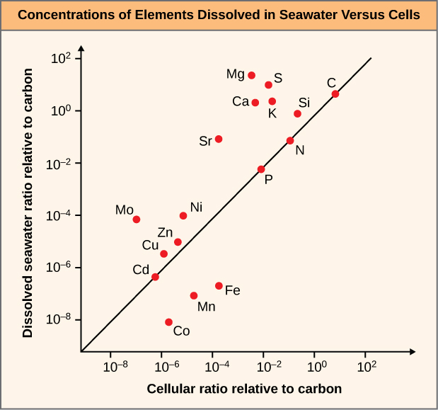 The graph is a scatter plot that shows dissolved seawater ratio relative to carbon on the y-axis, ranging from 10 to the minus 8 to 10 squared. The graph shows cellular ratio relative to carbon on the y-axis, ranging from 10 to the minus 8 to 10 squared. A diagonal trend line rises at a 45 degree angle from the bottom left to the upper right of the graph. The following elements cluster in the lower left corner of the plot line, within the 10 to the minus 4 values for both axes: C D, C O, M N, F E, C U, Z N, N I, and M O. The following elements cluster near the upper right corner of the plot line, above 10 to the minus 2 values for both axes: S R, P, N, K, C A , S I, S, M G, and C.
