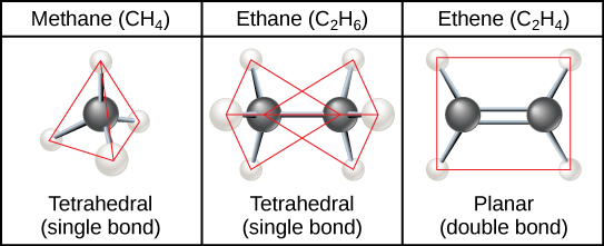 Methane, the simplest hydrocarbon, is composed of four hydrogen atoms surrounding a central carbon. The bond between the four hydrogen atoms and the central carbon spaced as far apart as possible. This results in a tetrahedral shape with hydrogen atoms projecting upward and off to three sides around the central carbon. Ethane is composed of two carbons connected by a single bond. Each carbon also has three hydrogen atoms connected to it. The hydrogens are spaced as far apart from each other and from the other carbon so again the shape is tetrahedral. Ethene, like ethane, is composed of two carbon atoms, but in this case the carbons are connected by a double bond. Each carbon also has two hydrogen atoms connected to it, for a total of three bonds. The three bonds are spaced as far apart as possible around carbon, which means they are all on the same plane and pointing off in three directions. As a result, the molecule is planar, or flat.