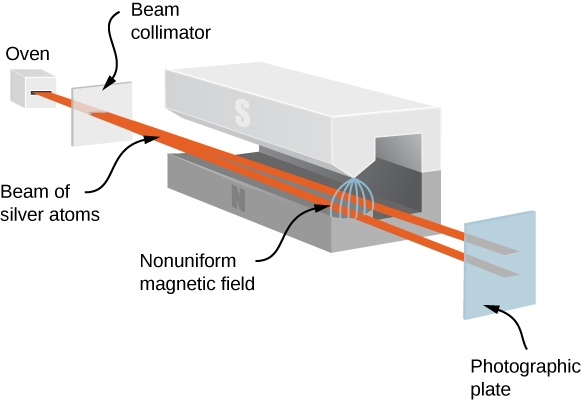 The figure shows an illustration of a Stern Gerlach experiment. A beam of silver atoms leaves an oven and is collimated as it passes through a slit. The collimated beam enters a magnet. As it passes between the poles of the magnet, the nonuniform magnetic field causes the beam to split in two. One part moves in the direction of the north pole, the other in the direction of the south pole. The two beams exit the magnet and hit a photographic plate in two distinct places.
