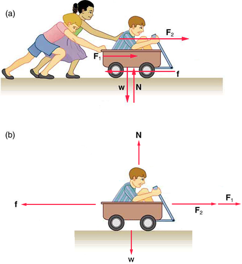 Two diagrams are shown. In the top diagram, two children are pushing a third child who is sitting in a wagon. The forces exerted by the children pushing the wagon are labeled F1 and F2 and point to the right in the direction that the wagon is facing. A friction force vector below the wagon points to the left. A Newton force vector below the wagon points upward. A weight force vector below the wagon points downward. In the bottom diagram, only the child in the wagon is shown. The F1 and F2 vectors are shown ahead of the wagon pointing to the right. The Newton force vector is above the wagon and is pointing upward. The weight force vector is below the wagon and points downward.