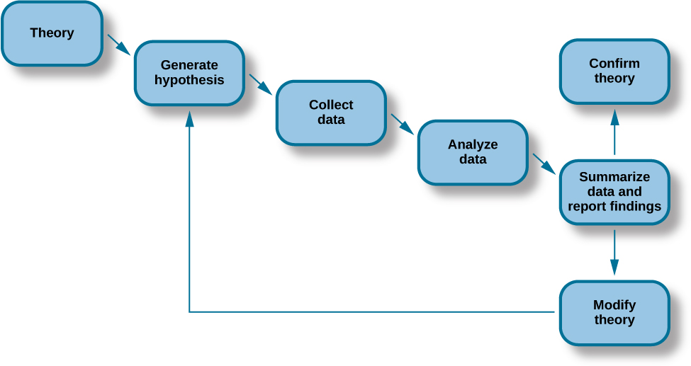 "A diagram has seven labeled boxes with arrows to show the progression in the flow chart. The chart starts at ""Theory"" and moves to ""Generate hypothesis,"" ""Collect data,"" ""Analyze data,"" and ""Summarize data and report findings."" There are two arrows coming from ""Summarize data and report findings"" to show two options. The first arrow points to ""Confirm theory."" The second arrow points to ""Modify theory,"" which has an arrow that points back to ""Generate hypothesis."""