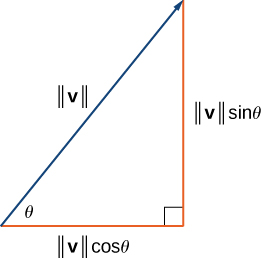 "This figure is a right triangle. There is an angle labeled theta. The two sides are labeled ""magnitude of v times cosine theta"" and ""magnitude of v times sine theta."" The hypotenuse is labeled ""magnitude of v."""