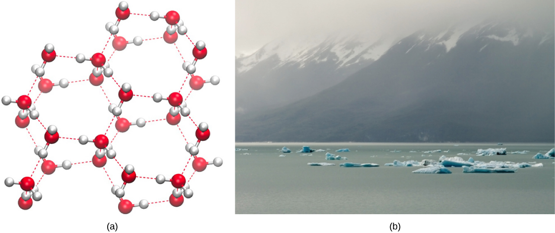 Part A shows the lattice-like molecular structure of ice. Part B is a photo of ice on water.
