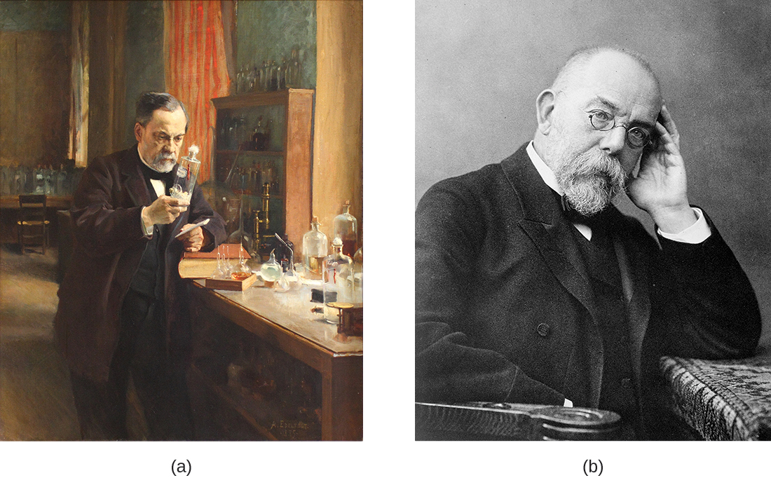 Figure a is a drawing of Louis Pasteur in his lab. Figure b is a photograph of Robert Koch.