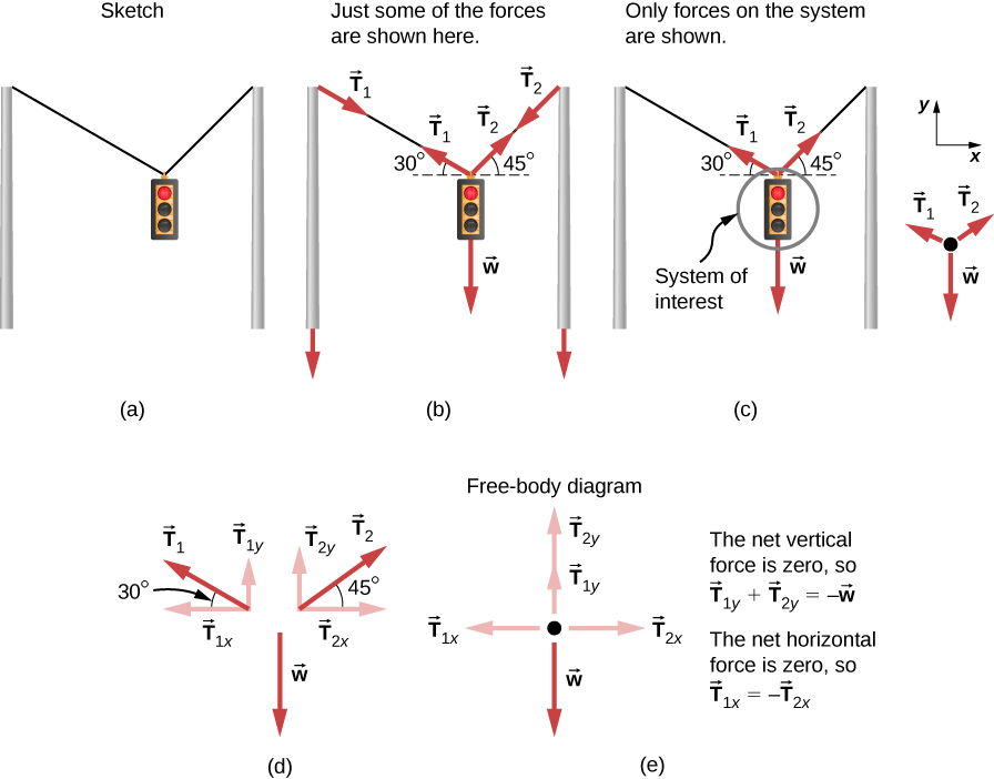 A sketch of a traffic light suspended from two wires supported by two poles is shown. (b) Some forces are shown in this system. Tension T sub one pulling the top of the left-hand pole is shown by the vector arrow along the left wire from the top of the pole, and an equal but opposite tension T sub one is shown by the arrow pointing up along the left-hand wire where it is attached to the light; the left-hand wire makes a thirty-degree angle with the horizontal. Tension T sub two is shown by a vector arrow pointing downward from the top of the right-hand pole along the right-hand wire, and an equal but opposite tension T sub two is shown by the arrow pointing up along the right-hand wire, which makes a forty-five degree angle with the horizontal. The traffic light is suspended at the lower end of the wires, and its weight W is shown by a vector arrow acting downward. (c) The traffic light is the system of interest, indicated by circling the traffic light. Tension T sub one starting from the traffic light is shown by an arrow along the wire making an angle of thirty degrees with the horizontal. Tension T sub two starting from the traffic light is shown by an arrow along the wire making an angle of forty-five degrees with the horizontal. The weight W is shown by a vector arrow pointing downward from the traffic light. A free-body diagram is shown with three forces acting on a point. Weight W acts downward; T sub one and T sub two act at an angle with the vertical. A coordinate system is shown, with positive x to the right and positive y upward. (d) Forces are shown with their components. T sub one is decomposed into T sub one y pointing vertically upward and T sub one x pointing along the negative x direction. The angle between T sub one and T sub one x is thirty degrees. T sub two is decomposed into T sub two y pointing vertically upward and T sub two x pointing along the positive x direction. The angle between T sub two and T sub two x is forty five degrees.  Weight W is shown by a vector arrow acting downward. (e) The net vertical force is zero, so the vector equation is T sub one y plus T sub two y equals W. T sub one y and T sub two y are shown on a free body diagram as equal length arrows pointing up. W is shown as a downward pointing arrow whose length is twice as long as each of the T sub one y and  T sub two y arrows. The net horizontal force is zero, so vector T sub one x is equal to minus vector T sub two x. T sub two x is shown by an arrow pointing toward the right, and T sub one x is shown by an arrow pointing toward the left.