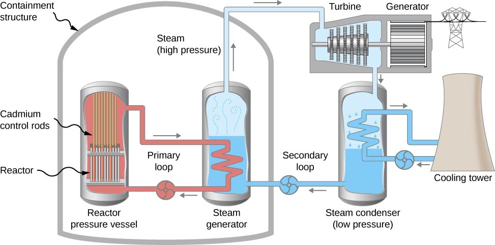A closed structure labeled containment structure has two vessels inside it, a reactor pressure vessel and a steam generator. The former contains cadmium control rods at the top and a reactor at the bottom. A closed loop labeled primary loop runs from the top to the bottom of the vessel. Part of this loop is within the second vessel, steam generator. This is filled with water and steam. A second closed loop labeled secondary loop runs from the steam generator to outside the containment structure and back in. Outside the structure, it passes through first a turbine and then a steam condenser. The turbine is attached to an electric generator. A closed loop runs from the steam condenser, through a cooling tower and back in.