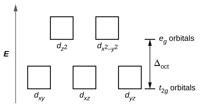 "A diagram is shown with a vertical arrow pointing upward along the height of the diagram at its left side. This arrow is labeled, ""E."" to the right of this arrow are two rows of squares outlined in yellow. The first row has three evenly spaced squares labeled left to right, ""d subscript ( x y ),"" ""d subscript ( x z ),"" and, ""d subscript ( y z )."" The second row is positioned just above the first and includes two evenly spaced squares labeled, ""d subscript ( z superscript 2 ),"" and, ""d subscript ( x superscript 2 minus y superscript 2 )."" At the right end of the diagram, a short horizontal line segment is drawn just right of the lower side of the rightmost square. A double sided arrow extends from this line segment to a second horizontal line segment directly above the first and right of the lower side of the squares in the second row. The arrow is labeled "" capital delta subscript oct."". The lower horizontal line segment is similarly labeled ""t subscript 2 g orbitals"" and the upper line segment is labeled ""e subscript g orbitals."""