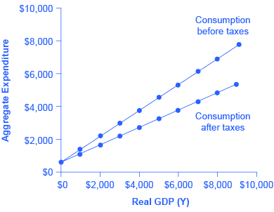 The graph shows two upward-sloping lines. The steeper of the two lines is the consumption before taxes. The more gradual of the two lines is the consumption after taxes.