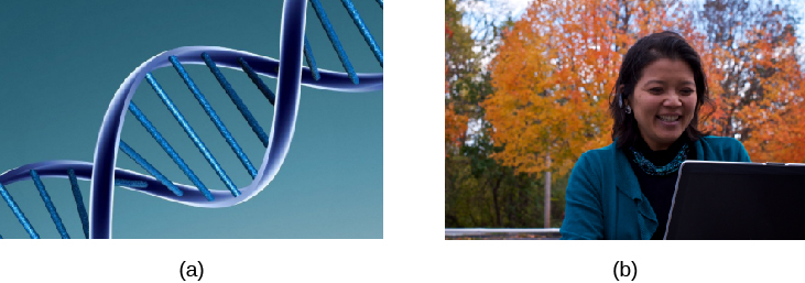 Image (a) shows the helical structure of DNA. Image (b) shows a person's face.