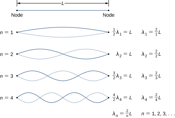 Four figures of a string of length L are shown. Each has two waves. The first one has 1 node. It is labeled half lambda 1 = L, lambda 1 = 2 by 1 times L. The second figure has 2 nodes. It is labeled lambda 2 = L, lambda 2 = 2 by 2 times L. The third figure has three nodes. It is labeled 3 by 2 times lambda 3 = L, lambda 3 = 2 by 3 times L. The fourth figure has 4 nodes. It is labeled 4 by 2 times lambda 4 = L, lambda 4 = 2 by 4 times L. There is a derived formula at the bottom, lambda n equal to 2 by n times L for n = 1, 2, 3 and so on.