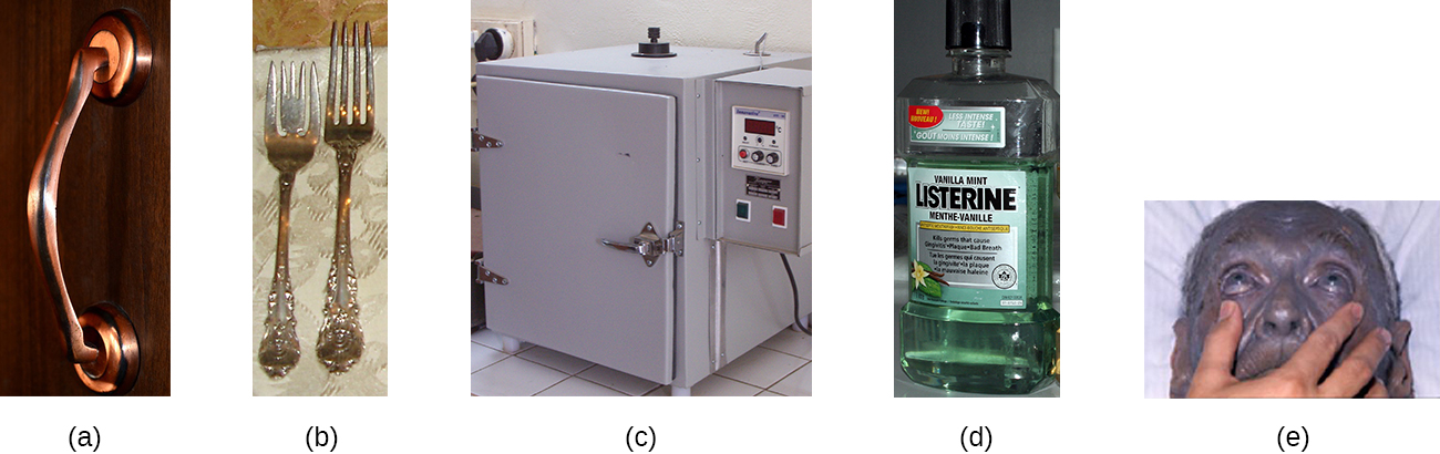 a) photo of a copper door handle. B) Picture of silver forks. C) Picture of an incubator d) picture of Listerine mouthwash. E) Picture of a person with gray skin.