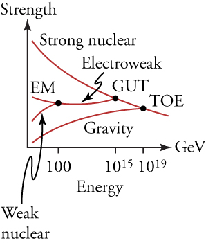This graph plots the strengths of different forces (on the vertical axis) against their energies (on the horizontal axis). The graph shows a series of distinct lines, labeled gravity, weak nuclear, electromagnetic (EM), and strong nuclear, converging from the left to the right. The lines labeled EM and weak nuclear converge at an energy of 100 GeV and form a new line labeled electroweak. The lines labeled electroweak and strong nuclear converge at 1015 GeV. The location of their convergence is labeled GUT. The lines labeled strong nuclear and gravity converge at 1019 GeV. The location of their convergence is labeled TOE (Theory of Everything). The gravity line always trends upward as energy increases, while the line labeled strong nuclear always trends downward. Prior to their convergence, the EM line trended downward while the weak nuclear line trended upward. After their convergence, the electroweak line remained relatively horizontal.