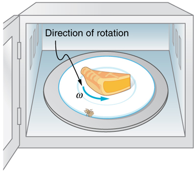 The figure shows a fly that has landed on the rotating plate of the microwave. The direction of rotation of the plate, omega, is counterclockwise and is shown with an arrow.
