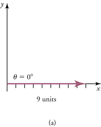 The diagram shows a vector along an x-axis with a magnitude of nine units and a direction of 0°. An unlabeled y-axis is also shown.