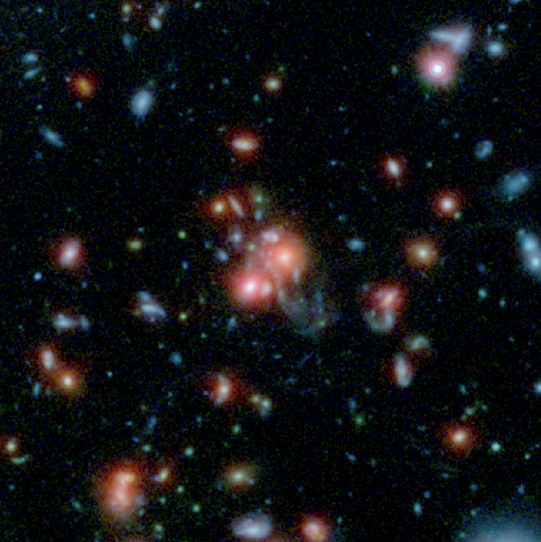 Merging Galaxies in a Distant Cluster. This HST image shows the core of one of the most distant galaxy clusters yet discovered, SpARCS 1049+56. At the center of the image chaotic shapes and long blue tidal tails can be seen.